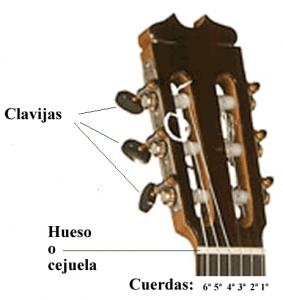 Partes de la guitarra española